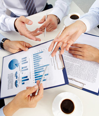 기업&직무 분석